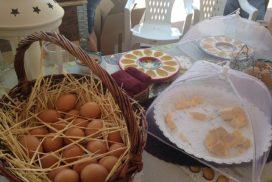 stand huevos